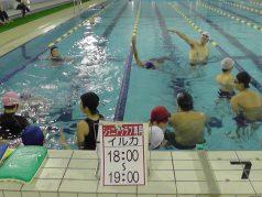 14.ジュニア水泳(イルカ)